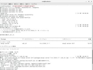 04_1_yum install -y mssql-server.png