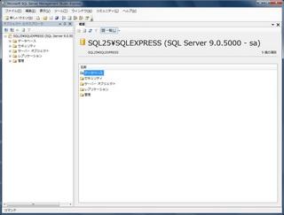 SQL25_2.jpg